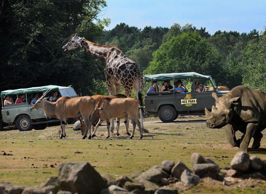 Med Djurslands Bank kan du komme på safariture for hele familien. Arrangementet administreres gennem Safetickets billetsystem
